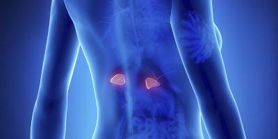 Tratament cu biorezonanţă pentru boala Addison